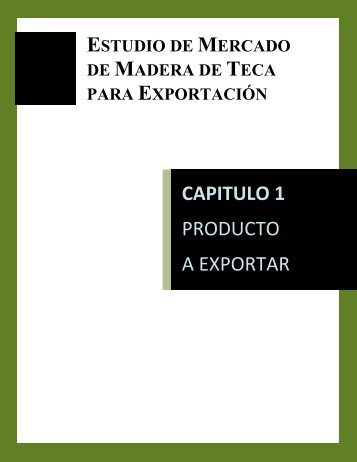 CAPITULO 1 PRODUCTO A EXPORTAR