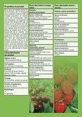 Sico® (PDF 427,1 KB) - Bayer CropScience - Schweiz - Page 2