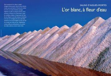 l'or blanc, à fleur d'eau - J'aime Aigues-Mortes