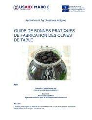 guide de bonnes pratiques de fabrication des olives de table