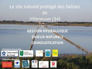 Le site naturel protégé des Salines de Villeneuve (34)
