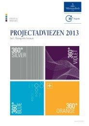 projectadviezen 2013 - Villeroy & Boch