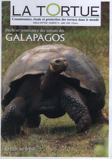 Connaissance, étude et protection des tortues dans le