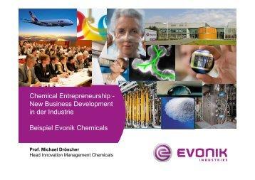 2008-01-09-Evonik Innovation-Vorlesung Karlsruhe 080109