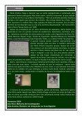 Infocehum 23 - cehum - Universidade do Minho - Page 2