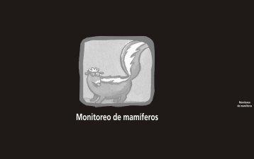 Monitoreo de mamíferos - cegae