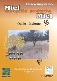 Miel otoño-invierno - cegae