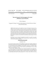 Hemiptera: Sternorrhyncha - Polskie Towarzystwo Entomologiczne