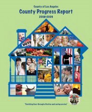 County Progress Report - Chief Executive Office - Los Angeles County