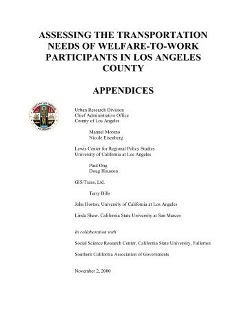 assessing the transportation needs of welfare-to-work participants in ...