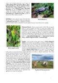 25 pages. Très nombreuses photos. Renseignements ... - LPO - Page 7