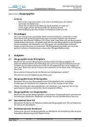 Beugungsgitter - Carl-Engler-Schule - Karlsruhe