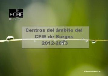 Centros del ámbito del CFIE de Burgos 2012-2013 - Youblisher.com