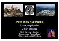 Pulmonale Hypertonie - HRZ Uni Marburg: Online-Media+CGI-Host