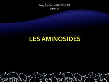 Aminosides