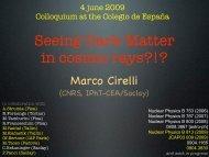 Marco CIRELLI (.pdf)