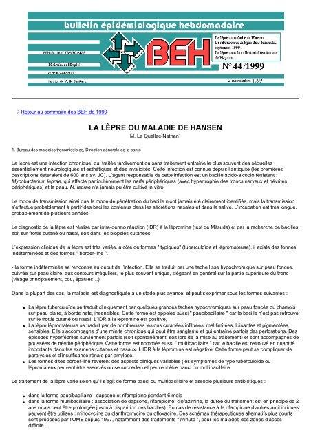 La lèpre ou maladie de Hansen - Banque de données en santé ...