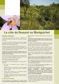 La côte du Montguichet (Beauzet) - Les Abbesses de Gagny-Chelles - Page 2