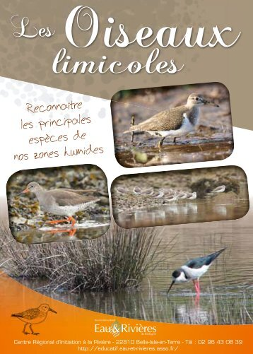 limicoles - Eau et Rivières de Bretagne