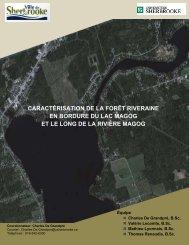 caractérisation de la forêt riveraine en bordure du lac magog et le ...