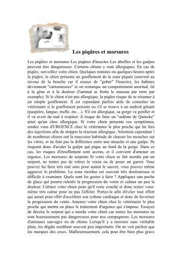 Contrat de réservation d'un chiot - Chiens de France