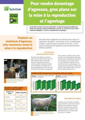 intervenir l 39 agnelage pour sauver des agneaux institut de l 39 elevage. Black Bedroom Furniture Sets. Home Design Ideas