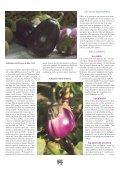 La lente percée La lente percée - La Ferme de Sainte Marthe - Page 2