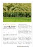 L'élevage, la viande : le désastre - One Voice - Page 4