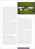 L'élevage, la viande : le désastre - One Voice - Page 5