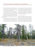 Metsä-Lapin - forestinfo.fi - Page 4