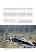 Metsä-Lapin - forestinfo.fi - Page 5