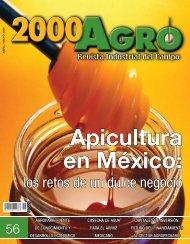 los retos de un dulce negocio - 3W México