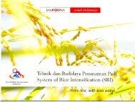 Tehnik dan Budidaya Penanaman Padi - The System of Rice ...