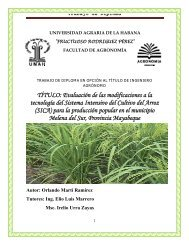 Trabajo de Diploma - The System of Rice Intensification
