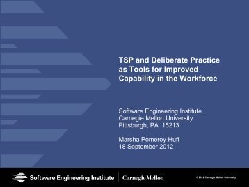 Tsp and deliberate practice as tools for improved capability in the workforce