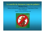 Dossier M. Ferry - Rayol pour tous