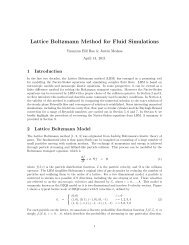 Lattice Boltzmann Method for Fluid Simulations