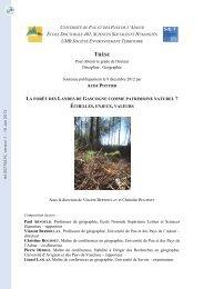 La forêt des Landes de Gascogne comme patrimoine naturel ...