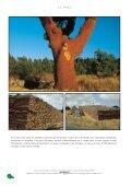 Ch 1-2 historique XP - Edilens - Page 6