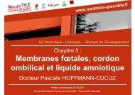 Membranes fœtales, cordon ombilical et liquide amniotique