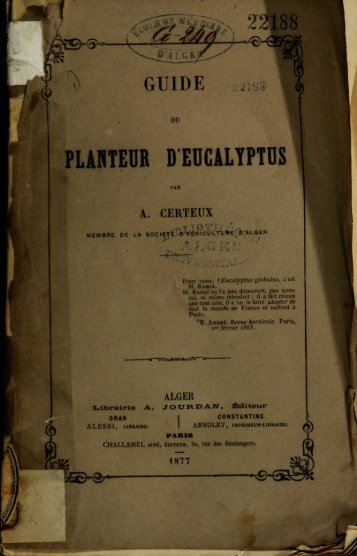 PLANTEUR DEDCALYPTUS