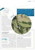 Quels cours d'eau veut la suisse» (pdf) - Pro Natura - Page 6