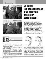 La selle: les conséquences d'un mauvais choix sur votre cheval