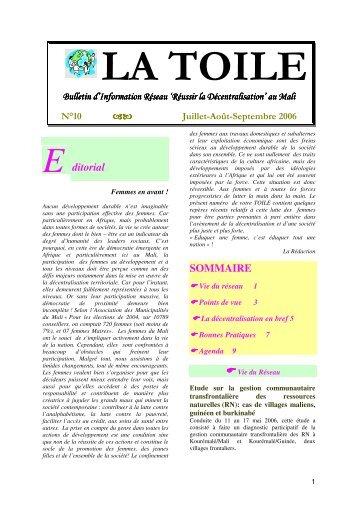La Toile n°10 - IED afrique
