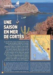 Mer de Cortes entre chaleur et cactus - Yachting Sud