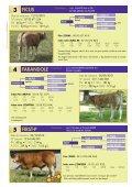 kbs-genetic.com Vente Auction sale Vente ... - kbs genetic italia - Page 6