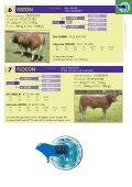 kbs-genetic.com Vente Auction sale Vente ... - kbs genetic italia - Page 7