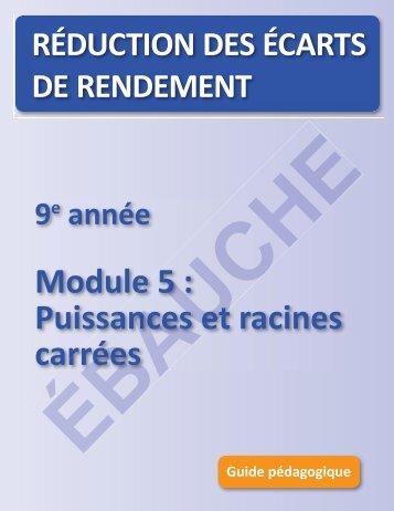 Module 5 : Puissances et racines carrées e 5 : sances et ... - EduGains