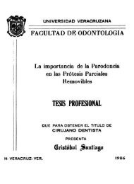 Cristobal Santiago.pdf