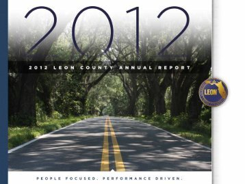 STRATEgIC PLAN - Leon County